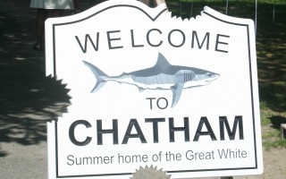 This signs greets visitors to the popular Sharks in the Park art exhibit at Kate Gould Park. Some are concerned that the association of Chatham with great white sharks could have a negative impact on the town. FILE PHOTO 