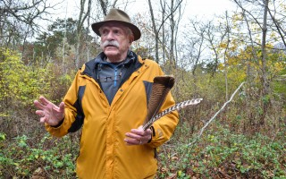 Irwin Schorr holds several turkey feathers. During the Harwich Conservation Trust's Turkey Walk he explained that those from the left wing made excellent quills for right-handed writers because of the angle of their curve. Kat Szmit Photo  (photo: Kat Szmit)