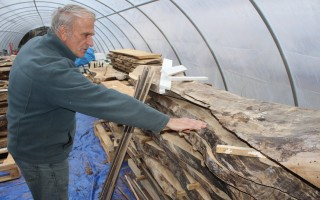 Brent Hemeon examines the wood now drying in one of his greenhouses that will be used to make tables in his workshop.  WILLIAM F. GALVIN PHOTO  (photo: William F. Galvin)
