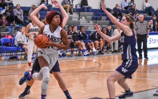 Monomoy's Nataia Nelson (14) focuses on the hoop as she goes in for two more points for the Sharks. Kat Szmit Photo  (photo: Kat Szmit)