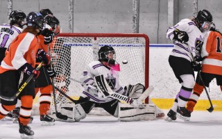 Furies goalie Molly McKenna (5) fends off a flying puck during game play against Stoughton on Feb. 11. Kat Szmit Photo  (photo: )