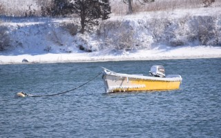 A frosty skiff in Chatham's Mill Pond. TIM WOOD PHOTO  (photo: )