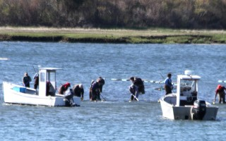Shellfishermen harvest in a newly opened area of the Oyster Pond in Chatham in 2014. FILE PHOTO  (photo: Alan Pollock)