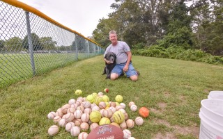 Walker the dog, owned by Bruce Young of Harwich Port, has an affinity for finding baseballs (and tennis balls, and softballs, and lacrosse balls, and...). Kat Szmit Photo  (photo: )