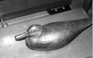 The Elmer Crowell decoy donated last weekend to the Harwich Historical Society. RUSS ALLEN PHOTO  (photo: Russ Allen)