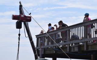 Replacement of the observation deck at the Chatham Fish Pier will move ahead, but without community preservation act funds.  FILE PHOTO  (photo: Tim Wood)