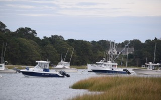 Moorings continue to be a hot topic in the draft consolidated waterways regulations. FILE PHOTO  (photo: Tim Wood)