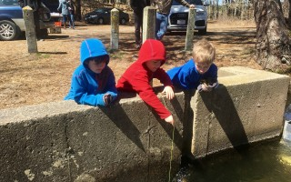 These youngsters had a good time playing at the herring run in West Harwich on World Fish Migration Day.  COURTESY PHOTO  (photo: Harwich Natural Resources Department)