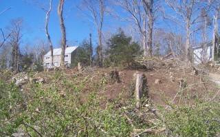 New vistas have opened up off Main Street since a property owner cleared many trees.  ED MARONEY PHOTO  (photo: Ed Maroney)