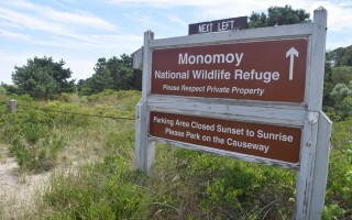 The Monomoy National Wildlife Refuge.  FILE PHOTO  (photo: Tim Wood)