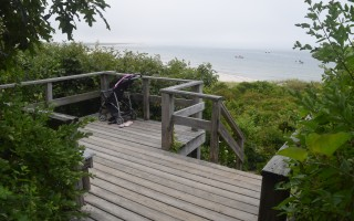 The trail leading to this viewing platform at the northeast side of the Monomoy National Wildlife Refuge Morris Island headquarters will be made safer and more accessible thanks to a state grant. The viewing platform will also be repaired as part of the project. TIM WOOD PHOTO  (photo: Tim Wood)