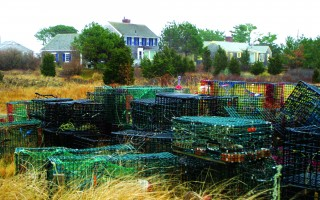 Lobster pots stored off Morris Island Road in Chatham. The Orleans Planning Board is wrestling with how to enforce a requirement for a special permit for residential storage of fishing gear. FILE PHOTO  (photo: Alan Pollock)
