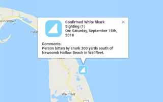 The location of the incident, as shown on the Atlantic White Shark Conservancy's Shartivity app.  (photo: )