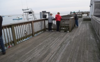 The observation deck at the Chatham Fish Pier. Bids to replace the structure, which was closed in September after a forklift structure a beam, are due Nov. 28. TIM WOOD PHOTO  (photo: )