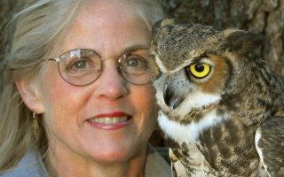 Marcia Wilson and a great-horned owl. MARK WILSON PHOTO  (photo: )