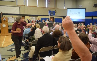 "Chatham residents are being asked to take the ""Town Meeting Pledge"" to attend this year's annual town meeting. FILE PHOTO  (photo: )"