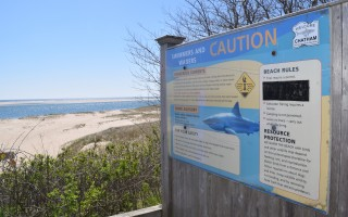 "Visitors to Lighthouse Beach this summer will be able to hear a free ""Shark Smart"" presentation by interns from the Atlantic White Shark Conservancy. TIM WOOD PHOTO  (photo: )"