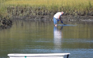 A shellfisherman harvests in Chatham's Mill Pond. TIM WOOD PHOTO  (photo: )