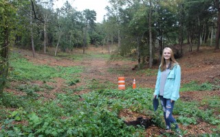 Monomoy Regional High School student Lily Daniels-Diehl has a plan for restoring Brooks Park Hollow in the wake of the July 23 tornado that cut through 2.7 miles of Harwich, destroying an estimated 3,000 trees along public ways, parks and conservation area. WILLIAM F. GALVIN PHOTO  (photo: )