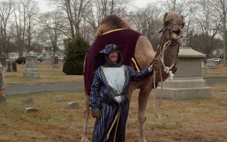 A camel from R.W. Commerford and Sons Farm in Goshen, Conn. will be part of the cast in the Boar's Head Festival. COURTESY PHOTO  (photo: )
