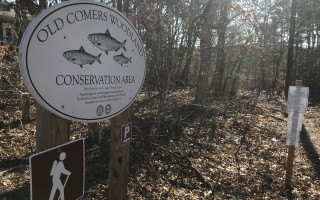 The Old Comers Woodland Conservation Area was the first purchase Chatham made under the Cape Cod Land Bank in 1999. TIM WOOD PHOTO  (photo: )