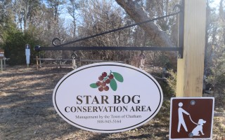 The trailhead at the Star Bog Conservation Area. TIM WOOD PHOTO  (photo: )