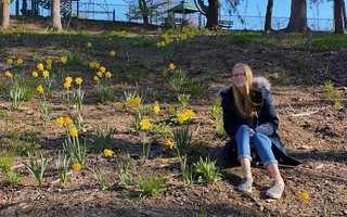 Lily Daniels-Diehl among the daffodils she has planted in the Brooks Park Hollow, part of a re-vegetation effort she is spearheading after July's tornado devastated trees in the public park. COURTESY PHOTO 