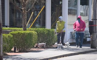 Masks are now required in downtown Chatham.  FILE PHOTO  (photo: Tim Wood)