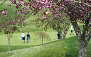 The golf committee and Director of Golf Roman Greer are hoping to get Cranberry Valley Golf Course up to full swing as soon as possible. FILE PHOTO  (photo: )
