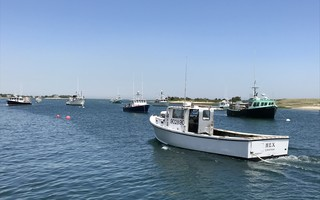 A fishing boat steams into Aunt Lydia's Cove. Selectmen last week voted against allowing fishermen to sell fish directly to consumers at the fish pier. TIM WOOD PHOTO  (photo: Tim Wood)