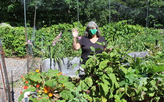 Donna Wood Eaton gives a farewell wave from one of her gardens at the Cedar Spring Herb Farm off Long Pond Drive. She and her husband, Brad Eaton, have sold the farm. WILLIAM F. GALVIN PHOTO  (photo: William F. Galvin)