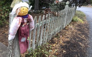 Halloween decorations are starting to come out, but whether trick-or-treaters will follow remains a question. TIM WOOD PHOTO  (photo: )