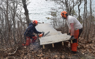 A U.S. Fish and Wildlife crew pull up a section of walkway leading to stars at the Monomoy National Wildlife Refuge's Morris Island headquarters. Continued erosion of the bluff prompted officials to remove the walkway and stairs last Thursday. TIM WOOD PHOTO  (photo: )
