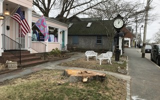 The iconic silver maple in front of 483 Main St. is gone. The tree was in poor condition, according to the property owner, and posed a safety hazard. TIM WOOD PHOTOS  (photo: )