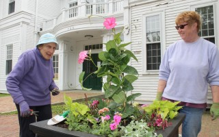 Garden Club of Harwich member Muriel Parker (left) and her daughter-in law, Linda Fulton, plant floral displays in two boxes outside Brooks Free Library last Thursday. WILLIAM F. GALVIN PHOTO   (photo: William F. Galvin)