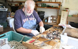 Mark Buckley of Cotuit baits hooks with frozen herring. Buckley has been baiting hooks for many years. ALAN POLLOCK PHOTO  (photo: )