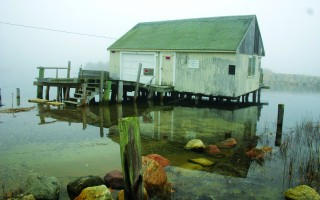 DEP uphold the conservation commission on reconstruction of Herring River fish house. WILLIAM F. GALVIN PHOTO  (photo: )