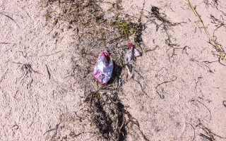 A mylar balloon is embedded in the sand at the Monomoy Wildlife Refuge.   (photo: Kat Szmit)