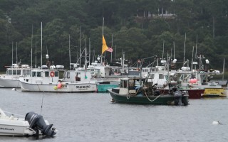 The fishing fleet from Chatham Harbor takes refuge in Ryder's Cove.  ALAN POLLOCK PHOTO  (photo: Alan Pollock)