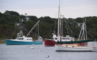 Although revisions to several of the town's waterways regulations cover a wide range of topics, rules governing moorings have been the most controversial.  (photo: )