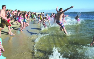 April Fools scramble into Nantucket Sound in 2014. FILE PHOTO  (photo: Alan Pollock)