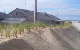 """We are in a very precarious position"" at Nauset Beach, DPW and Natural Resources Director Tom Daley told selectmen last week. ""There's eight to 10 feet between the administration building and the North Atlantic.""  ED MARONEY PHOTO  (photo: Ed Maroney)"
