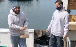 Fishermen Jared Bennett and Matt Kilkenny prepare locally caught scallops for sale right off the boat at Saquatucket Harbor. DOREEN LEGGETT PHOTO  (photo: )