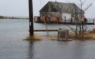 The fish house in the Herring River has experienced some very high tides during storms over the past couple of months. WILLIAM F. GALVIN PHOTO  (photo: William F. Galvin)