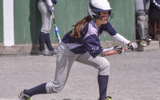 Monomoy's Eliza Hawthorne gets into bunt position during the Sharks' game last Wednesday (April 19) against D-Y. Kat Szmit Photo  (photo: )