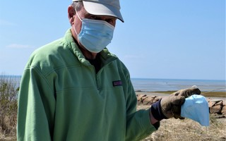 Dennis Murphy found a discarded mask during the Friends of Rock Harbor clean-up on Saturday.  ED MARONEY PHOTO  (photo: Ed Maroney)