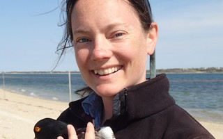 Wildlife Biologist Pamela Loring with an American oystercatcher. COURTESY PHOTO 