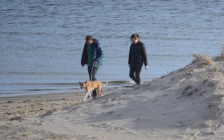 A couple walks a dog on Lighthouse Beach earlier this month. Dogs aren't allowed on town beaches between May 1 and Sept. 15; members of the park and recreation commission are considering loosening those restrictions. TIM WOOD PHOTO   (photo: Tim Wood)