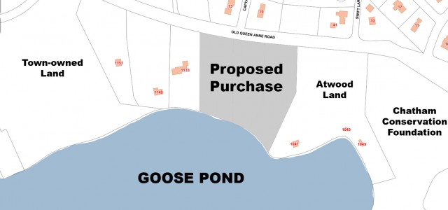 Voters To Consider $1 3M Goose Pond Land Purchase | Cape Cod