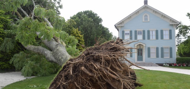 Chatham Battered By 90MPH Winds | Cape Cod Chronicle